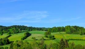 Bayerskt skoglandskap Arkivbild