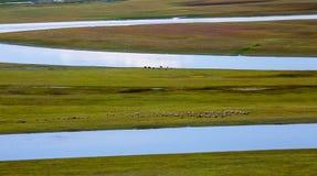 Bayinbuluke Grassland Scenery Stock Photo