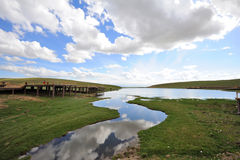 Bayinbuluke grassland and Swan lake in summer Stock Photos