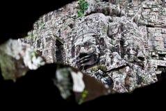 bayon Buddha uśmiechnięta świątynia Fotografia Stock