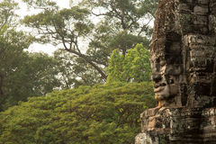 Bayon face with jungle. Bayon famous face with jungle in background Royalty Free Stock Image