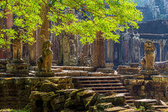 Bayon Temple, Angkor Thom, Siem Reap Stock Photos