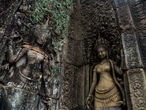Bayon temple in Angkor Thom, Siemreap, Cambodia.  royalty free stock images