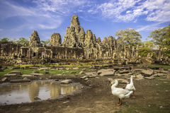 Bayon temple, Angkor Wat, Cambodia, Asia. Royalty Free Stock Image