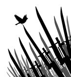 Bayonet bird of peace Royalty Free Stock Photo