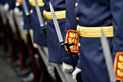 Bayonet detail in a guard of honor Royalty Free Stock Image