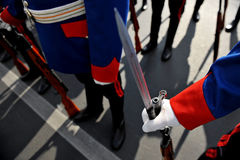 Bayonet detail during military parade Royalty Free Stock Photography