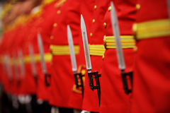 Bayonet detail during military parade Stock Image