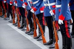 Bayonet rifle detail during military parade Stock Images