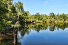 Bayou And Rustic Dock Royalty Free Stock Images