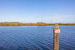 Bayou Lafourche, Louisiana Stockbild