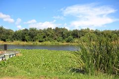 Bayou Lafourche, Louisiana stockfotos