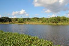Bayou Lafourche, Louisiana lizenzfreie stockbilder