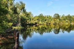 Bayou und rustikales Dock Lizenzfreie Stockbilder