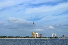 Bayside West Tampa Royalty Free Stock Photography