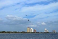 Bayside Zachodni Tampa Fotografia Royalty Free