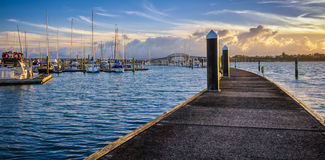 Bayswater-Jachthafen Lizenzfreie Stockbilder