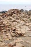Bazalt skały na foreshore zdjęcie royalty free