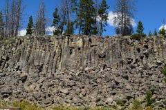 Bazalt w kolumny Yellowstone parku narodowym Obraz Stock