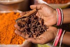 Bazar indiano orientale Fotografia Stock Libera da Diritti