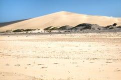 在Bazaruto海岛上的沙丘 库存照片