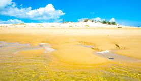 Bazaruto sand dunes with low tide Stock Image