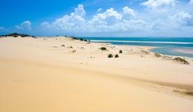 Bazaruto tropisk sandig strand Royaltyfri Fotografi