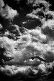 Bbackground черно-белых драматических monochrome облаков кумулюса Стоковые Фото
