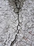 A barren whitish desert: the ground is covered with cracks and crust of salt, close-up. Bbarren whitish desert: the ground is covered with cracks and crust of Stock Image