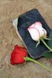 A Bíblia preta velha na areia da praia Imagem de Stock
