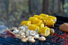 BBQ在格栅和玉米烹调的蘑菇蘑菇、面包 免版税库存照片