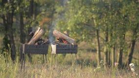 BBQ的自然柴火,对室外的mangal火 曼加勒火,自然壁炉,好的HD真火 在firep的死的炭烬 股票录像