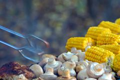 BBQ肉在格栅和玉米烤的蘑菇蘑菇 免版税图库摄影