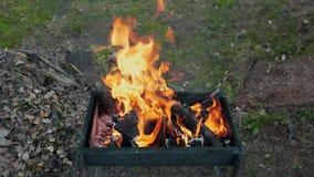 BBQ à l'arrière-cour, faisant les charbons chauds pour la cuisson sur le feu ouvert, le barbecue d'été, le feu ouvert, la fumée e clips vidéos
