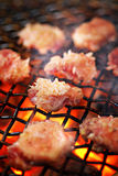 bbq βόειο κρέας που ψήνεται στη σχάρα Στοκ Φωτογραφίες