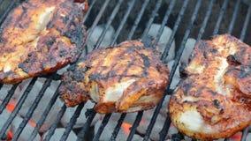 BBQ κοτόπουλο απόθεμα βίντεο