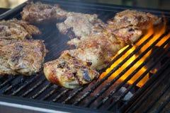 BBQ κοτόπουλο Στοκ φωτογραφία με δικαίωμα ελεύθερης χρήσης