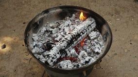 BBQ πυρκαγιά απόθεμα βίντεο