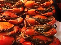 BBQ σειρά θαλασσινών Στοκ Εικόνες