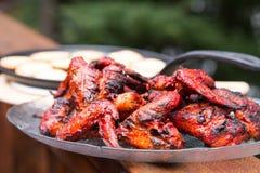 BBQ φτερά κοτόπουλου tandoori Στοκ Εικόνες