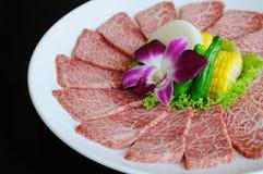 bbq χοιρινό κρέας πιάτων Στοκ Φωτογραφία
