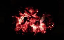 BBQ royaltyfria foton