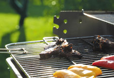 BBQ. In a sunny garden stock photo