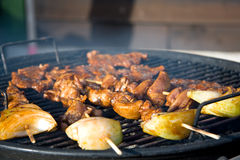 Free BBQ Royalty Free Stock Images - 8921179