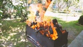 BBQ avec le bois de chauffage brûlant dans la cour Maison de vacances tir lent Bel endroit clips vidéos