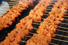 BBQ Chicken on Grill. BBQ Barbecue Chicken on Grill stock images
