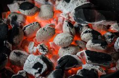 Bbq, Barbecue, Coal, Flame, Grill Stock Images