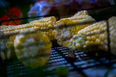 Bbq barbecue on the grill in the woods on vacation. royalty free stock photo