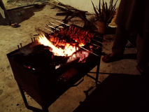 Bbq. Barbeque fire night fun Royalty Free Stock Images