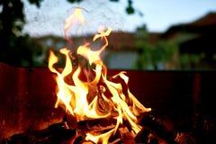 Bbq-brandflammor Royaltyfri Fotografi